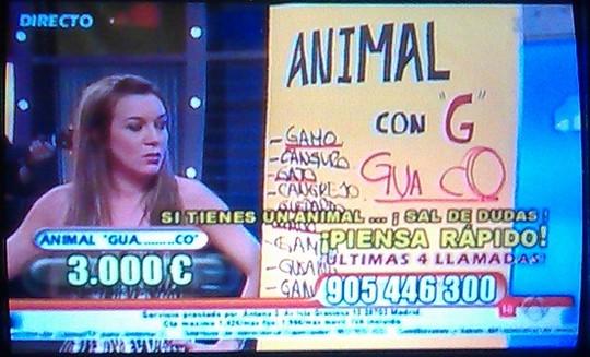 Guanaco - - Adivina quién gana esta noche